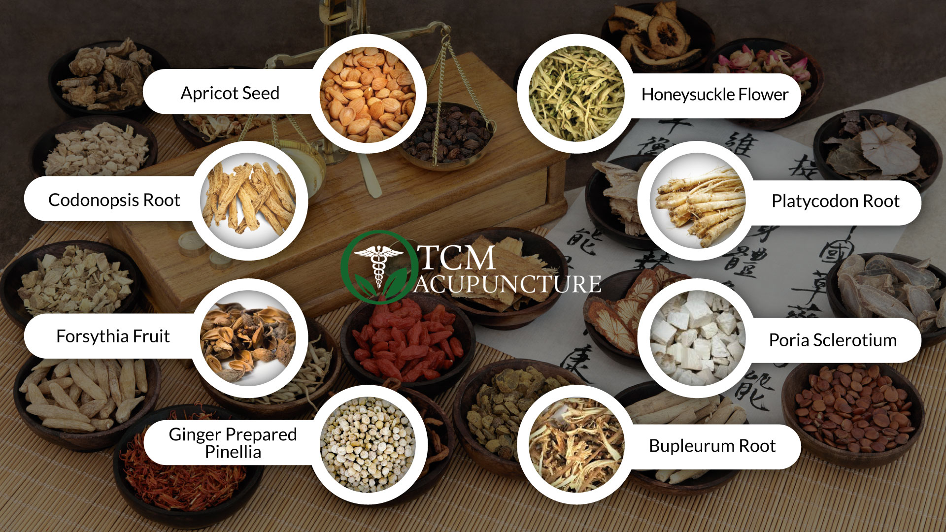 Tcm-acupuncture-Miami-body-mind-spirit-Treatment-Cupping treatment-Infertility treatment- Gua Sha treatment-Tui Na treatment-Herbal Medicine-Moxa Treatment- Skin Disease Treatment- Meditation & more- Tai JI/ Tai Chi